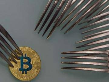 50 forks of Bitcoin in 2018. Crazy or reasonable trend