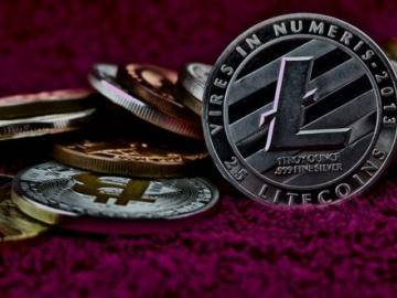 Why is the price of Litecoin and other cryptocurrencies fall?