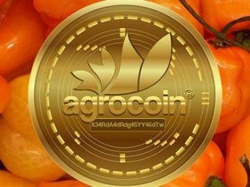 How can you link the chili and cryptocurrency: Burning taste and ambitious plans of Mexico